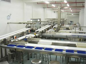 Automatic Tray Loading System (for Secondary Packaging)