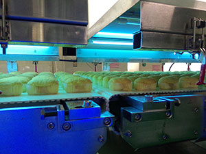 Bread / Cake Double Deck Switchover Cooling Conveyor